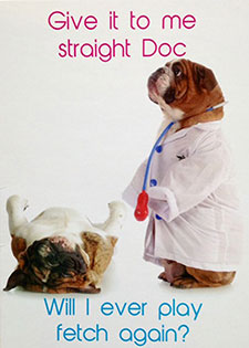 Poster of dog and doctor